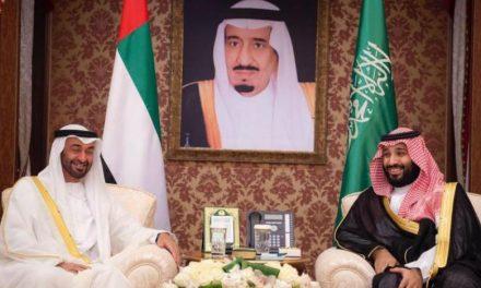 مجلس التنسيق السعودي – الإماراتي يعزز مسيرة الشراكة بين البلدين