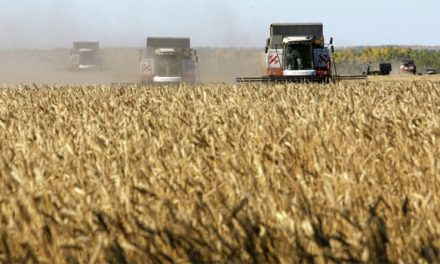 في روسيا… الزراعة أقوى من السلاح