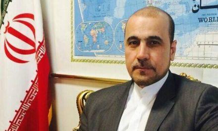 الموسوي: الثورة الإيرانية وضعت خطة الأربعينية القادمة
