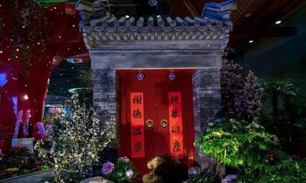"""""""معرض بكين الدولي للبستنة 2019"""": مفهوم جديد للعولمة الخضراء"""