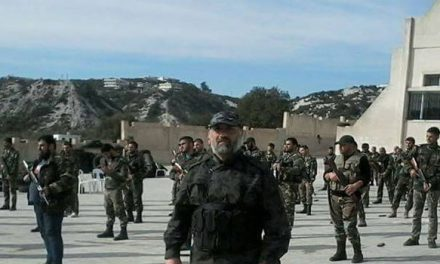 شبُّول: الدرونز عامل عسكري مساعد لا يغير المعادلات