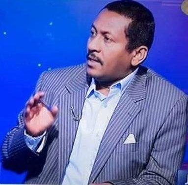 إبراهيم: قيادات المجلس غير مؤهلة ودول الجوار لا تريد سوداناً ديمقراطياً