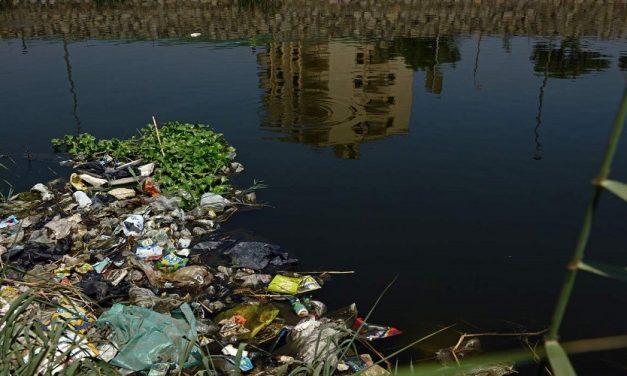 أزمة مياه النيل أم أزمة الدولة المصرية؟*