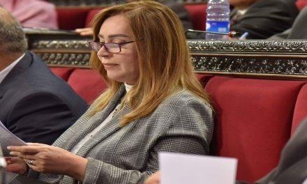 """ستيفانو: مواجهة """"كورونا"""" تتم بجهود سورية شبه ذاتية"""