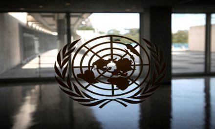 الأمم المتحدة ودورها في قضايا حقوق الإنسان