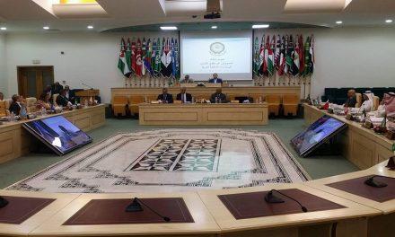 مشاريع حقوق الإنسان العربية والإسلامية