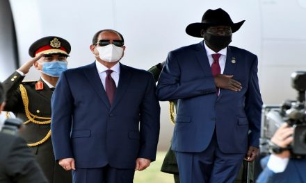 دوافع متعددة: ماذا تعني زيارة الرئيس المصري لجنوب السودان؟