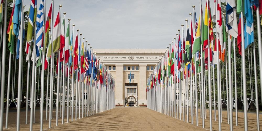الواقع العملي للحياة الدولية