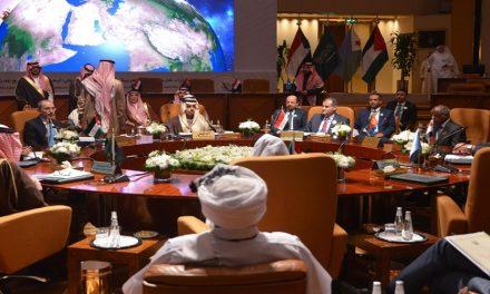 آفاق التعاون العربي – الإفريقي لحماية أمن البحر الأحمر وخليج عدن
