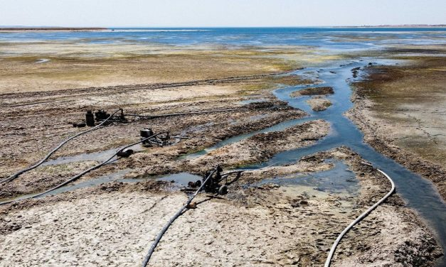 مبررات الأمن القومي العربي في مجال المياه